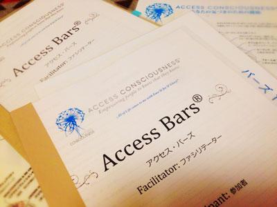 accessbars48